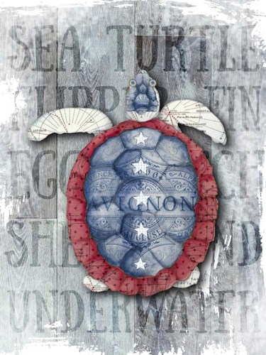 Sea Turtle Poster by Christine Anderson Illustration for $58.75 CAD