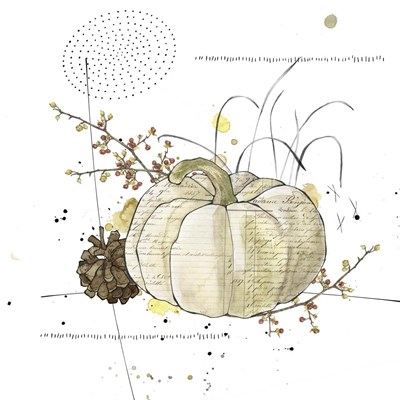 Fall Harvest  - Cream Pumpkin 1 Poster by Christine Anderson Illustration for $35.00 CAD