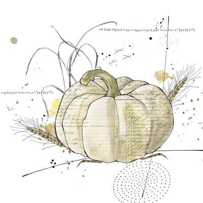 Fall Harvest  - Cream Pumpkin 2 Poster by Christine Anderson Illustration for $35.00 CAD