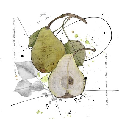 Fall Harvest - Pear Poster by Christine Anderson Illustration for $35.00 CAD
