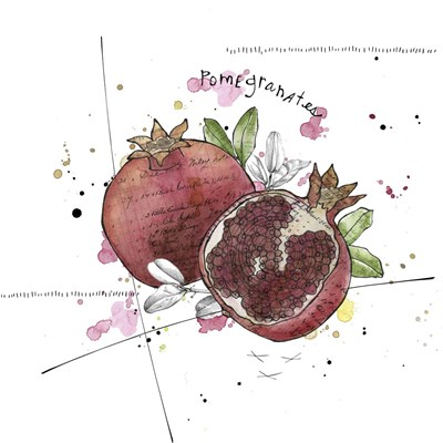 Fall Harvest - Pomegranate Poster by Christine Anderson Illustration for $35.00 CAD