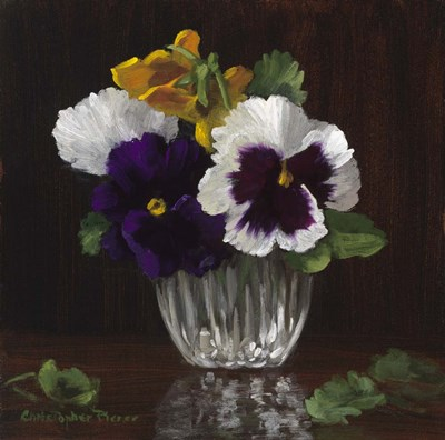 Four Pansies Poster by Christopher Pierce for $78.75 CAD
