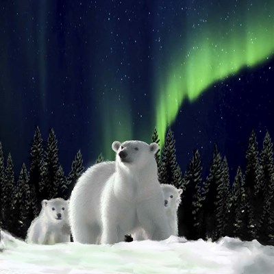 Polar Family 2 Poster by Clare Davis London for $35.00 CAD