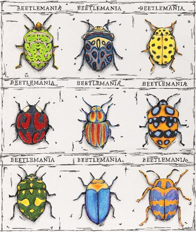 Beetlemania Poster by Claudia Interrante for $46.25 CAD
