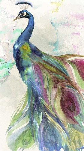 Peacock Dress Poster by Color Bakery for $48.75 CAD