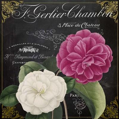 Fleur du Jour IV Poster by Color Bakery for $56.25 CAD