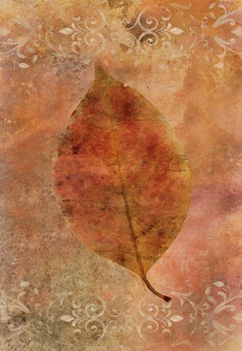 Picked Up Autumn Leaf I Poster by Cora Niele for $43.75 CAD