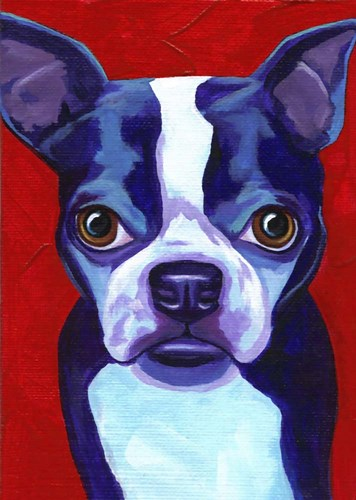 Boston Terrier Poster by Corina St. Martin for $42.50 CAD