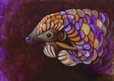Pangolin Poster by Corina St. Martin for $40.00 CAD