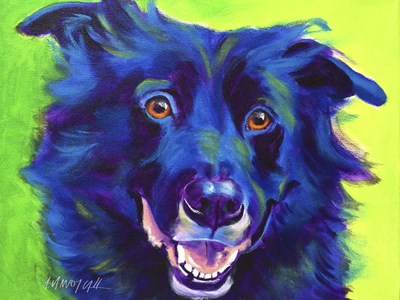 Border Collie - Viktor Poster by DawgArt for $37.50 CAD