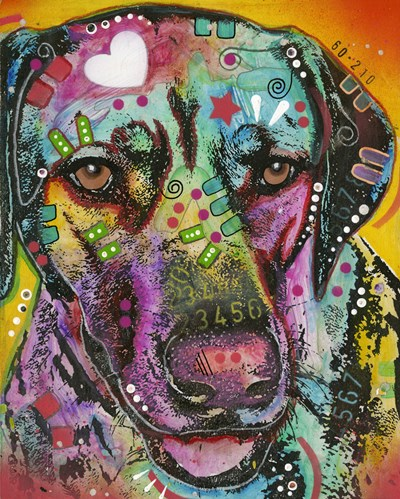Brown Eyed Dog Poster by Dean Russo- Exclusive for $56.25 CAD