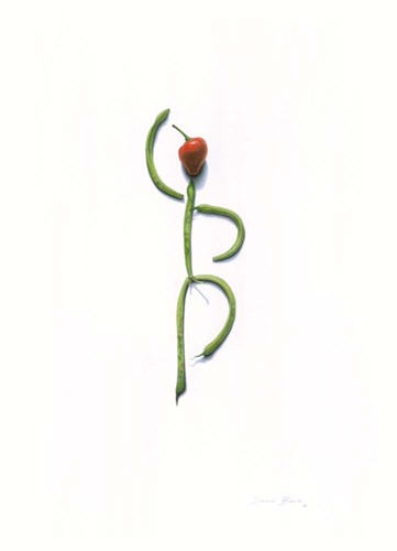 String Bean Chili Pepper Dancer Poster by Donna Basile for $33.75 CAD