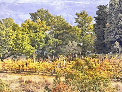 Tuscan Countryside In Autumn Poster by Dorothy Berry-Lound for $41.25 CAD