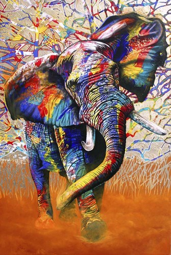African Colours Poster by Graeme Stevenson for $43.75 CAD