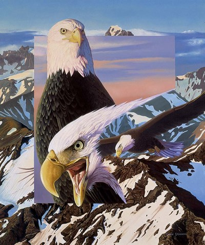 Screaming Eagles Poster by Graeme Stevenson for $55.00 CAD
