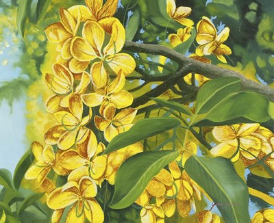 Yellow Flower Poster by Graeme Stevenson for $56.25 CAD