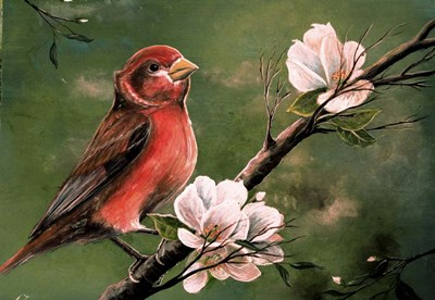 Red Finch Poster by Greg Farrugia for $38.75 CAD