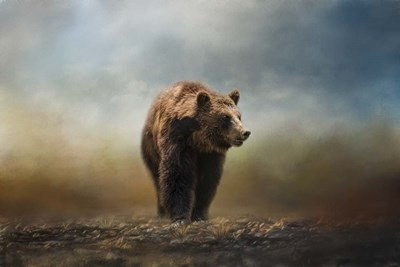 Grizzly On The Rocks Poster by Jai Johnson for $43.75 CAD