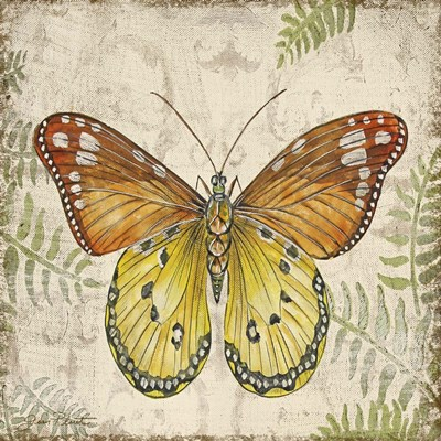 Butterfly Daydreams - C Poster by Jean Plout for $41.25 CAD