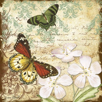Inspirational Butterflies - B Poster by Jean Plout for $35.00 CAD