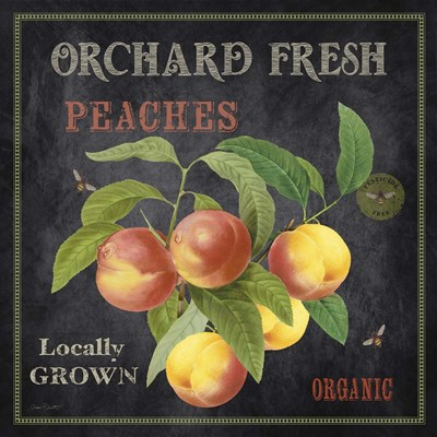 Orchard Fresh Peaches Poster by Jean Plout for $35.00 CAD