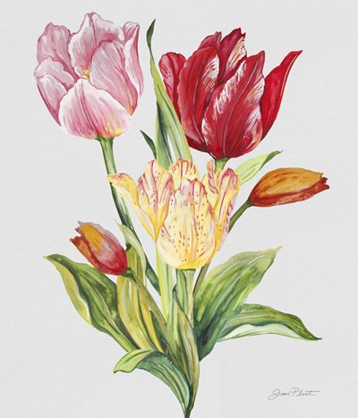 Botanicals 9 Poster by Jean Plout for $37.50 CAD