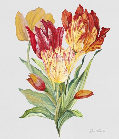 Botanicals 10 Poster by Jean Plout for $37.50 CAD
