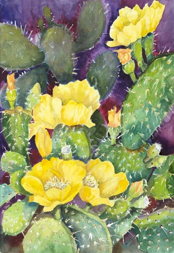 Cactus with Yellow Blooms Poster by Joanne Porter for $43.75 CAD