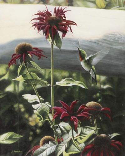 Lynn's Garden Poster by Judith Hartke for $56.25 CAD