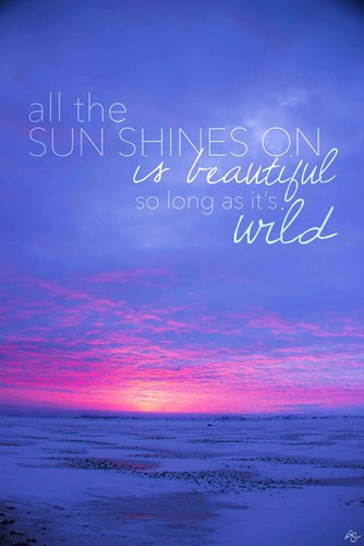 All The Sun Shines On Poster by Kimberly Glover for $43.75 CAD