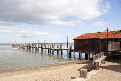 China Camp Pier Poster by Lance Kuehne for $62.50 CAD