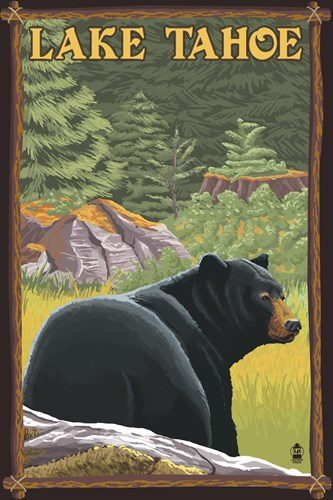 Lake Tahoe Bear Poster by Lantern Press for $102.50 CAD