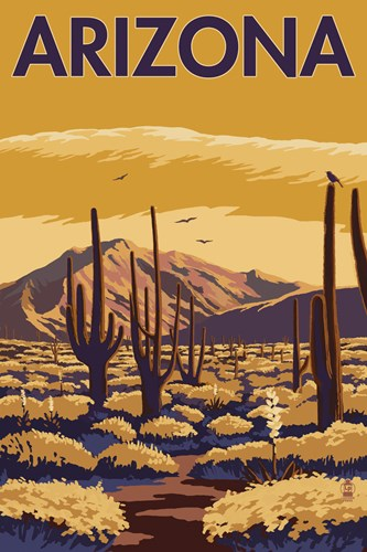 Arizona Cactus Scene Poster by Lantern Press for $102.50 CAD