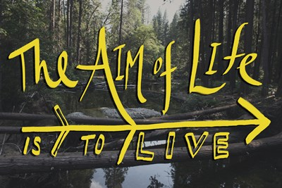 Aim of Life Poster by Leah Flores for $46.25 CAD