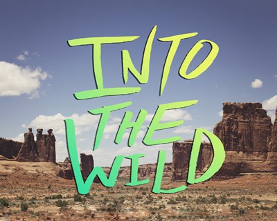 Into the Wild (Moab) Poster by Leah Flores for $43.75 CAD