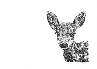 Deer Poster by Let Your Art Soar for $52.50 CAD