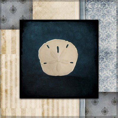 Blue Sea Sand Dollar Poster by LightBoxJournal for $35.00 CAD