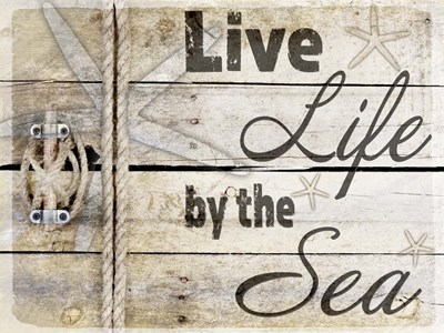 Country Sea Sign 3 Poster by LightBoxJournal for $41.25 CAD
