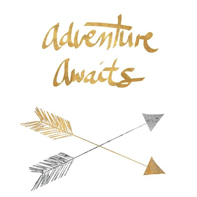 Adventure Arrows Poster by Lisa Powell Braun for $41.25 CAD
