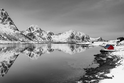 Composure BW Poster by Michael Blanchette Photography for $43.75 CAD