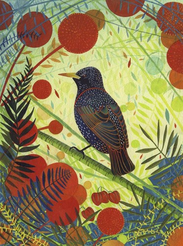 Starling Poster by Michelle Campbell for $41.25 CAD