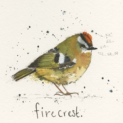 Firecrest Poster by Michelle Campbell for $48.75 CAD