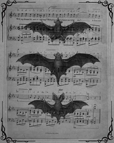 Vintage Bats 1 Poster by Natasha Wescoat for $40.00 CAD