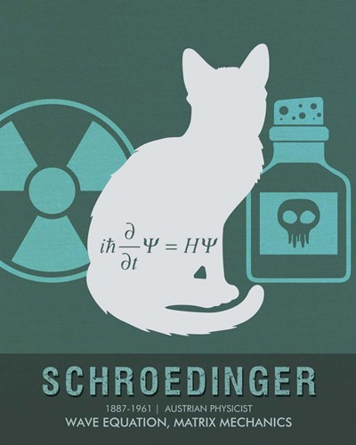 Schroedinger Poster by Studio Grafiikka for $56.25 CAD