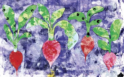 Radishes Poster by Summer Tali Hilty for $42.50 CAD