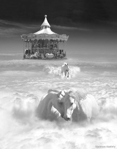 Horsing Around Vertical Poster by Thomas Barbey for $40.00 CAD