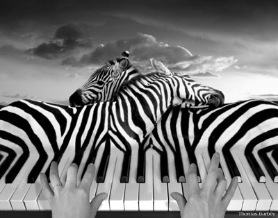 Piano Peace Poster by Thomas Barbey for $36.25 CAD