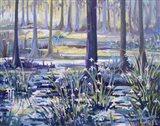 Blue Bayou Swamp