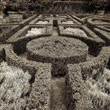 Tuscan Giardini I