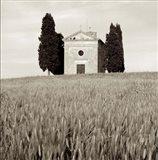 Tuscany IX